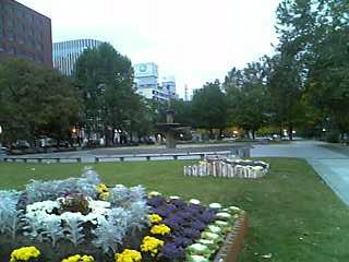 朝の大通公園